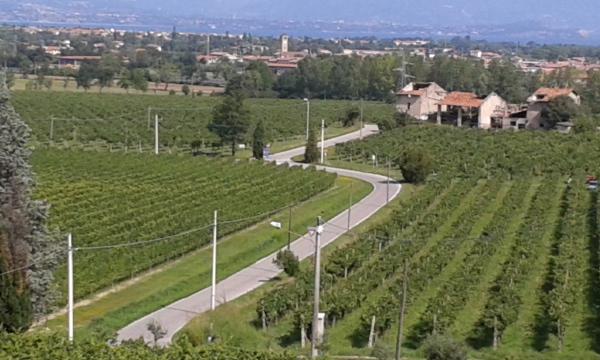 San Martino - panoramica dalla Torre